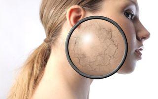Выбор тонального крема для сухой кожи: подробный обзор продукции